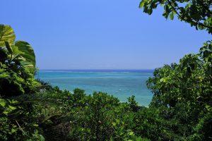 沖縄の風俗って働きやすいですか?出稼ぎを考えてます。